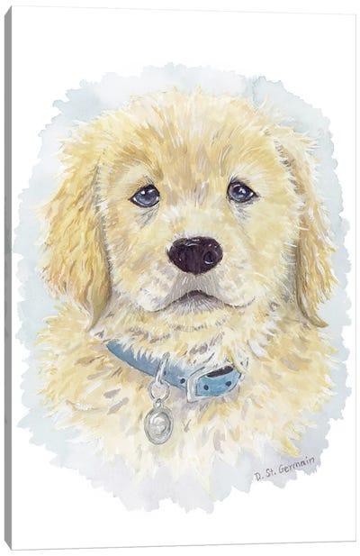 Tucker The Golden Retriever Puppy Canvas Art Print