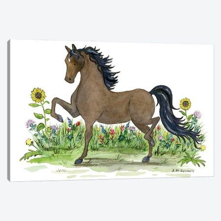 Morgan Horse Canvas Print #JSY135} by Jasper And Ruby Canvas Print