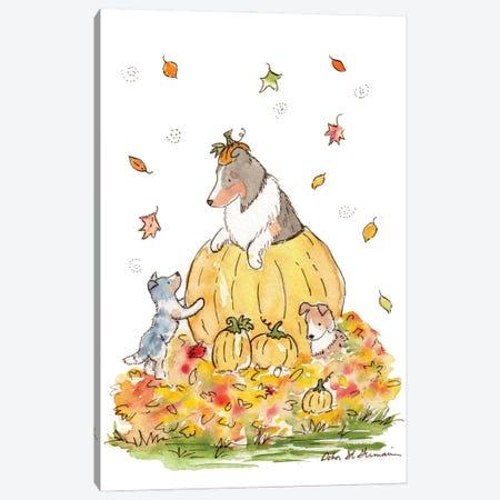 Pumpkin Patch Shelties Canvas Print #JSY15} by Jasper And Ruby Canvas Art