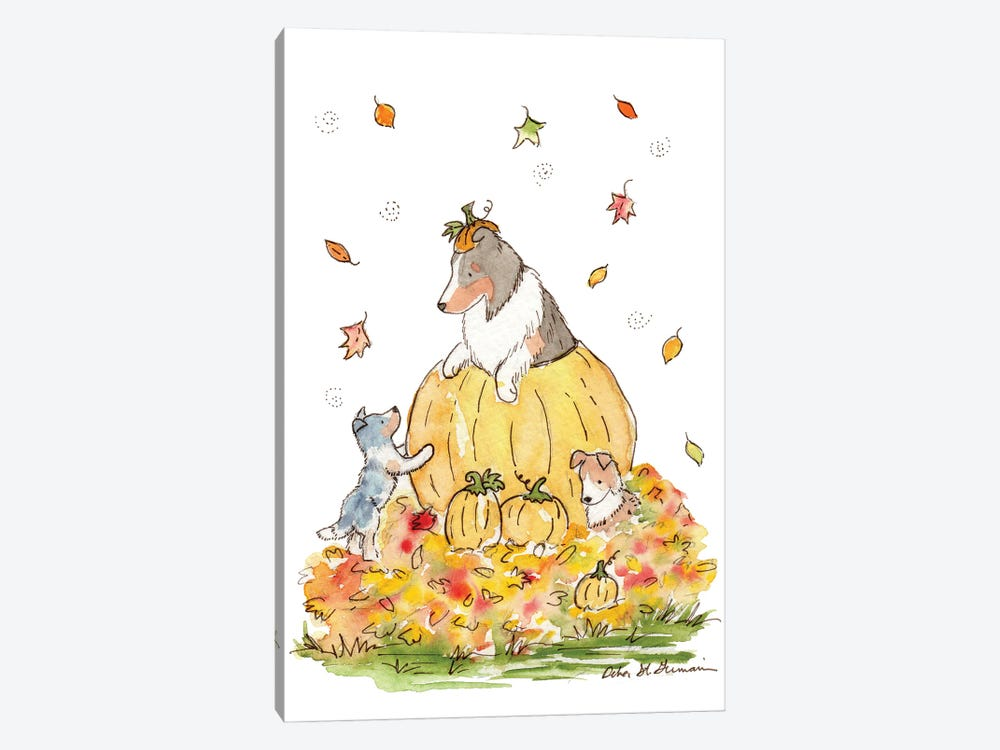 Pumpkin Patch Shelties by Jasper And Ruby 1-piece Canvas Artwork