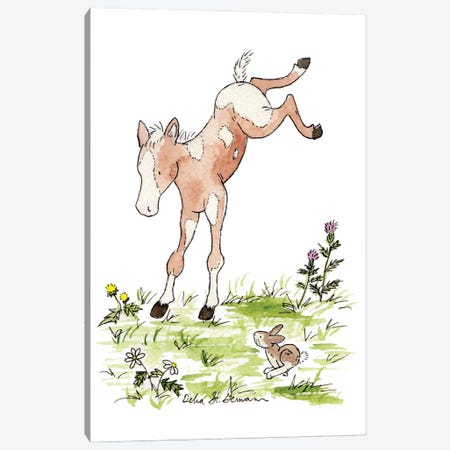Kicking Foal Canvas Print #JSY19} by Jasper And Ruby Canvas Print