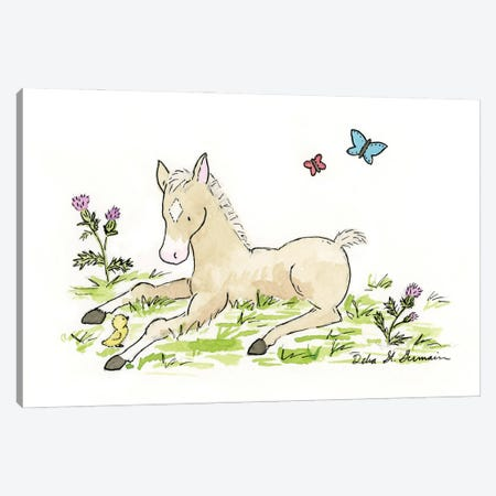 Little Foal Canvas Print #JSY20} by Jasper And Ruby Canvas Wall Art