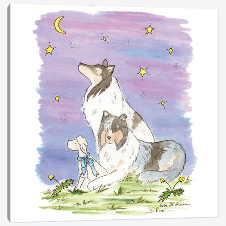 The Wishing Star: Blue Merle Collies Canvas Print #JSY4} by Jasper And Ruby Canvas Art Print