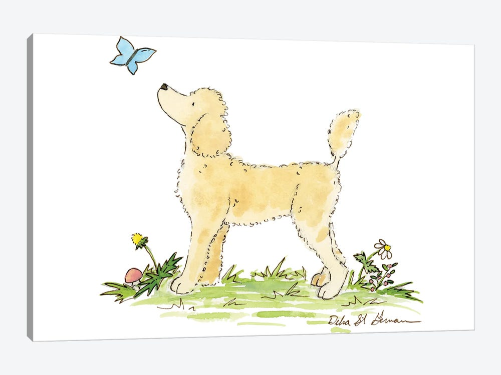 Apricot Poodle by Jasper And Ruby 1-piece Canvas Artwork