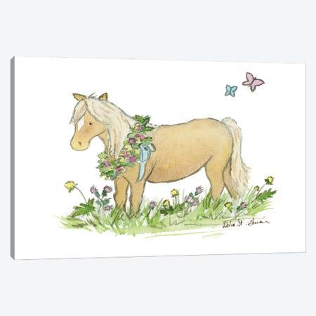 Shetland Pony Canvas Print #JSY55} by Jasper And Ruby Canvas Wall Art