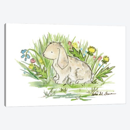Lop Eared Bunny Canvas Print #JSY58} by Jasper And Ruby Canvas Print