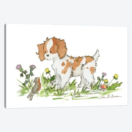 Cavalier King Charles Spaniel Canvas Print #JSY60} by Jasper And Ruby Canvas Wall Art