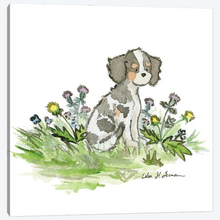 Cavalier King Charles Spaniel- Tri Color Canvas Print #JSY63} by Jasper And Ruby Canvas Artwork