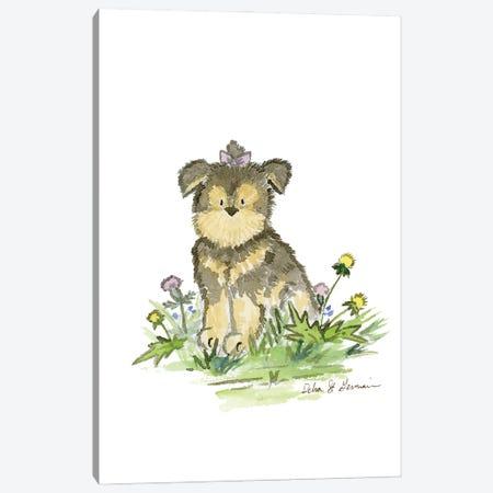 Yorkshire Terrier Canvas Print #JSY65} by Jasper And Ruby Art Print
