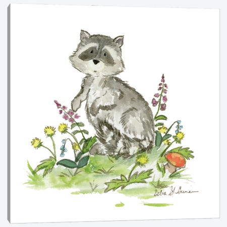 Raccoon Canvas Print #JSY67} by Jasper And Ruby Canvas Art Print