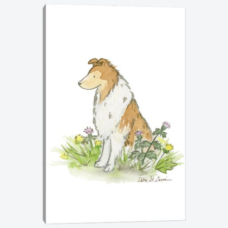 Sable Rough Collie Canvas Print #JSY68} by Jasper And Ruby Canvas Artwork