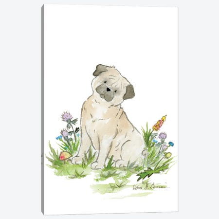 Pug Canvas Print #JSY75} by Jasper And Ruby Canvas Artwork