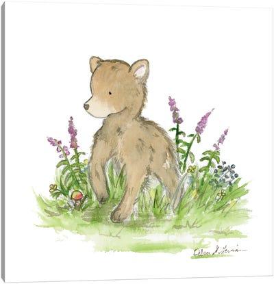 Brave Little Bear Canvas Art Print