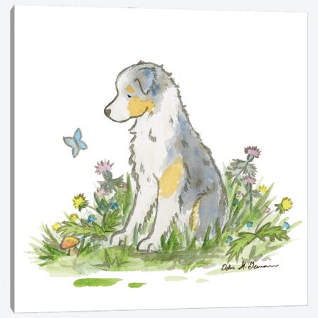 Blue Merle Australian Shepherd Canvas Print #JSY81} by Jasper And Ruby Canvas Wall Art