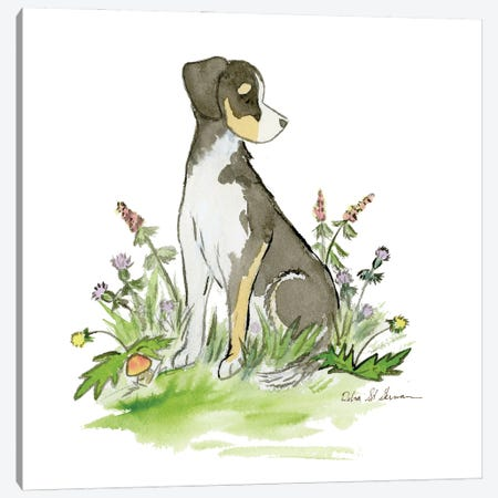 Little Hound Mix Canvas Print #JSY88} by Jasper And Ruby Canvas Artwork