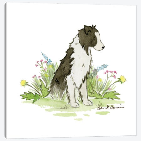 Nell The Border Collie Canvas Print #JSY92} by Jasper And Ruby Canvas Art Print