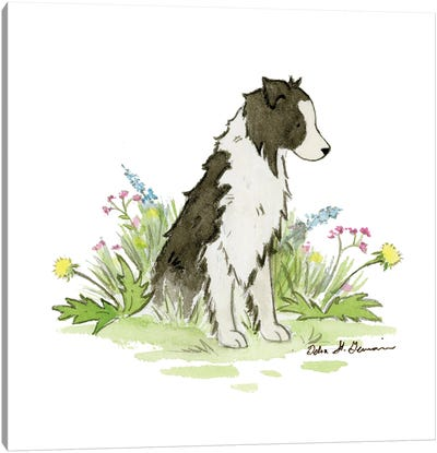 Nell The Border Collie Canvas Art Print
