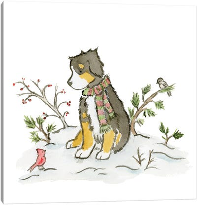Bernese Mountain Dog In Winter Canvas Art Print