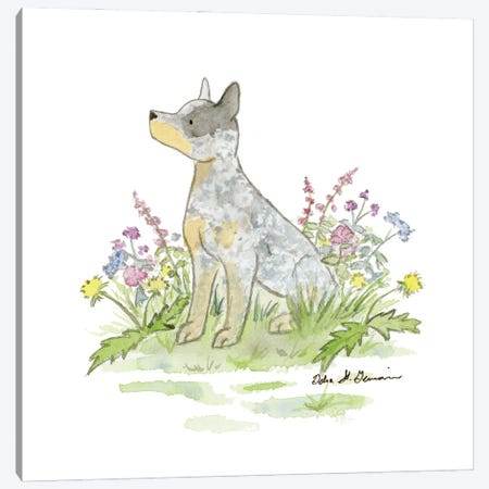 Jack The Australian Cattle Dog Canvas Print #JSY97} by Jasper And Ruby Canvas Wall Art