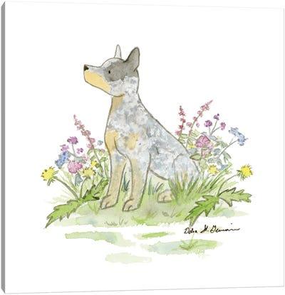 Jack The Australian Cattle Dog Canvas Art Print