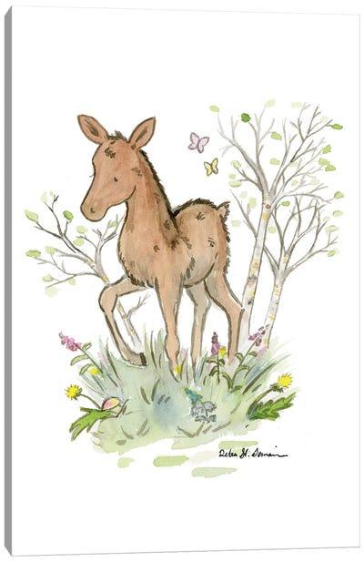 Little Moose Calf Canvas Art Print