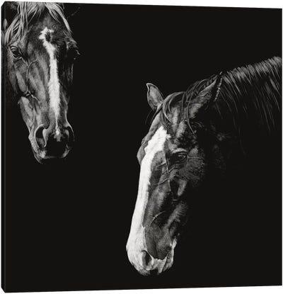 Cowboy Scratchboard III Canvas Art Print