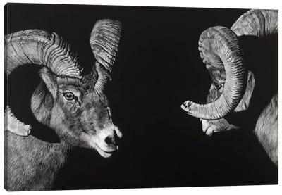 Wild Scratchboard I Canvas Art Print