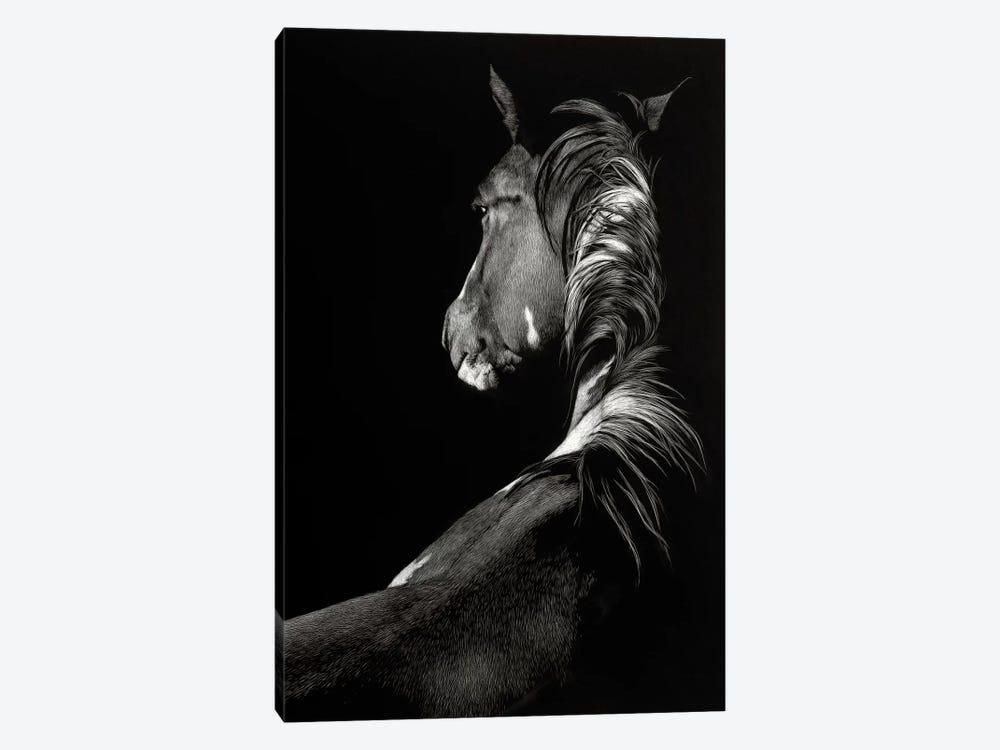 Sunstruck by Julie T. Chapman 1-piece Canvas Artwork