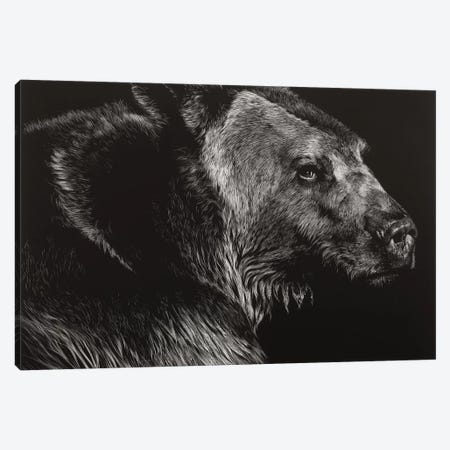 Wild Scratchboard II Canvas Print #JTC110} by Julie T. Chapman Art Print