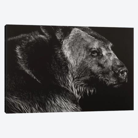 Wild Scratchboard II Canvas Print #JTC110} by Julie T. Chapman Art Print
