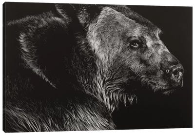 Wild Scratchboard II Canvas Art Print
