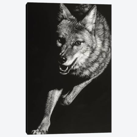 Wild Scratchboard V Canvas Print #JTC113} by Julie T. Chapman Canvas Print