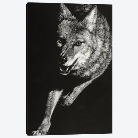 Wild Scratchboard V 3-Piece Canvas #JTC113} by Julie T. Chapman Canvas Print