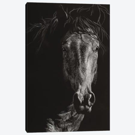 Wild Scratchboard VI Canvas Print #JTC114} by Julie T. Chapman Canvas Artwork