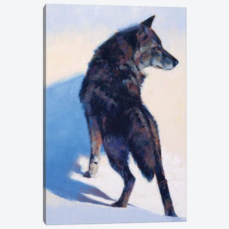 Wolf Study I Canvas Print #JTC115} by Julie T. Chapman Canvas Art