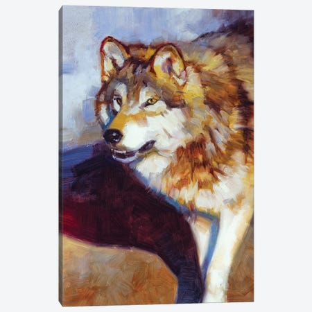 Wolf Study II Canvas Print #JTC116} by Julie T. Chapman Canvas Artwork