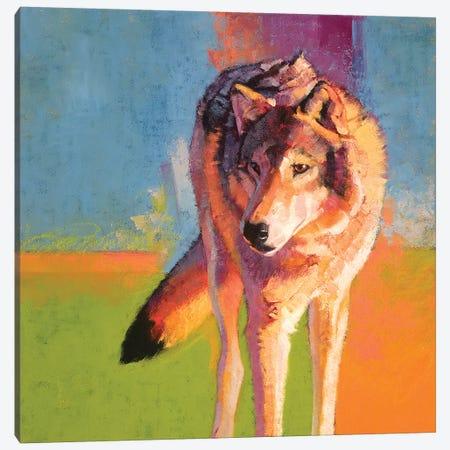 Wolf Study III Canvas Print #JTC117} by Julie T. Chapman Canvas Wall Art