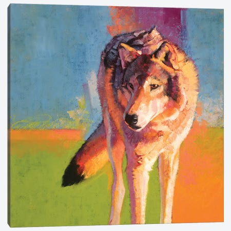 Wolf Study III Canvas Print #JTC117} by Julie T. Chapman Canvas Wall Art