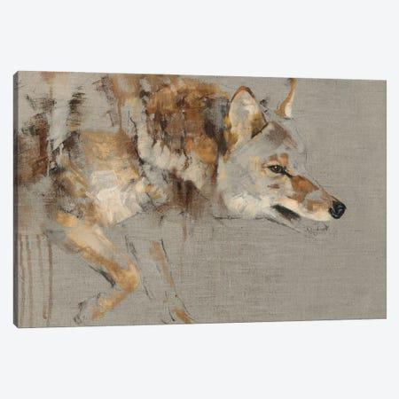 The Drifter Canvas Print #JTC124} by Julie T. Chapman Canvas Art Print
