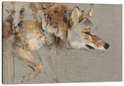 The Drifter Canvas Art Print