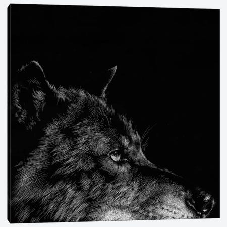 Wolf I Canvas Print #JTC13} by Julie T. Chapman Canvas Artwork