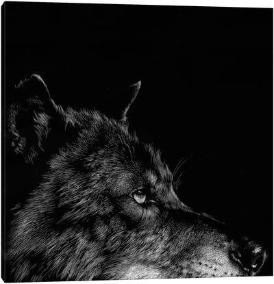 Wolf I Canvas Print #JTC13