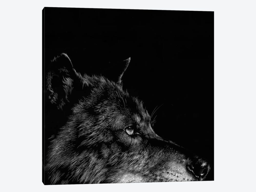Wolf I by Julie T. Chapman 1-piece Canvas Print