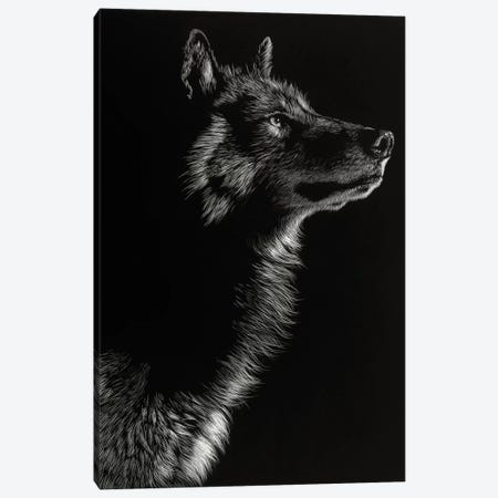 Wolf II Canvas Print #JTC14} by Julie T. Chapman Canvas Art Print