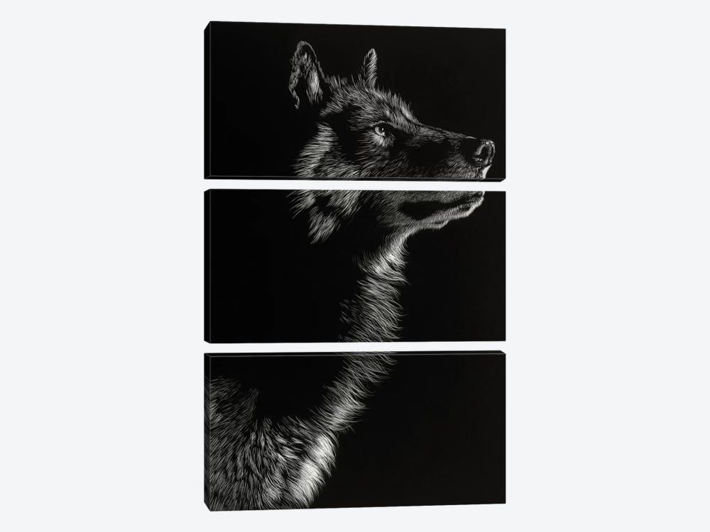Wolf II by Julie T. Chapman 3-piece Canvas Art