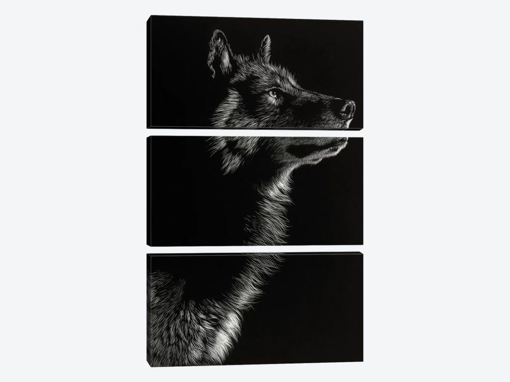Wolf II by Julie T. Chapman 3-piece Canvas Art