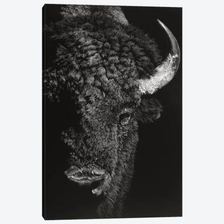 Black Glimpse I Canvas Print #JTC16} by Julie T. Chapman Canvas Art Print