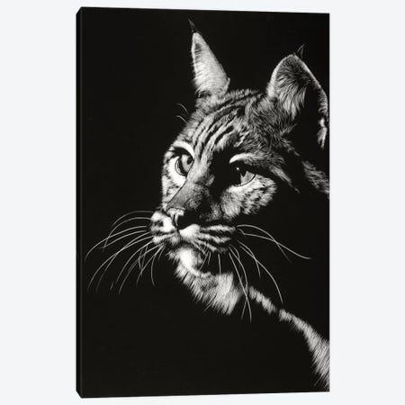 Black Glimpse II 3-Piece Canvas #JTC17} by Julie T. Chapman Canvas Print