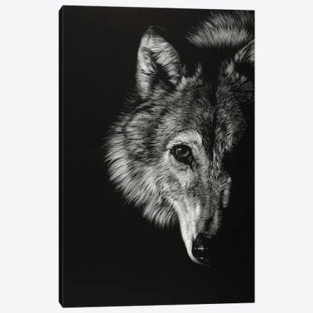 Black Glimpse III Canvas Print #JTC18} by Julie T. Chapman Canvas Art
