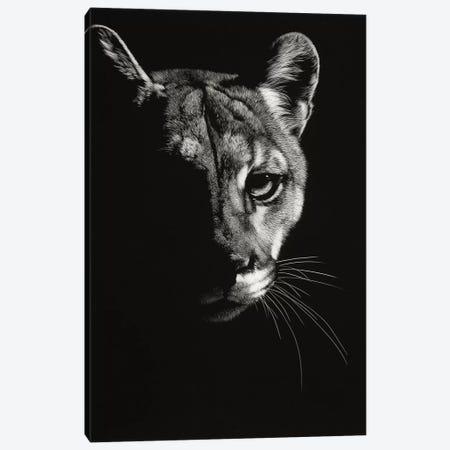 Black Glimpse IV 3-Piece Canvas #JTC19} by Julie T. Chapman Canvas Art